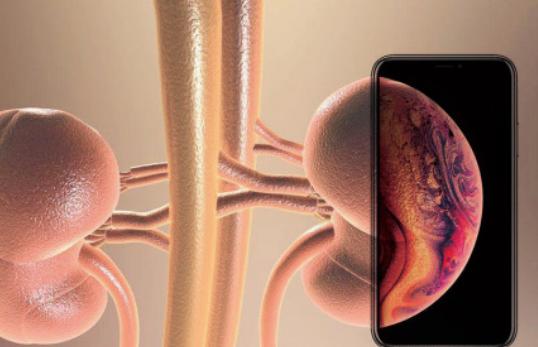 速回收:新iPhone XS遭全网吐槽,