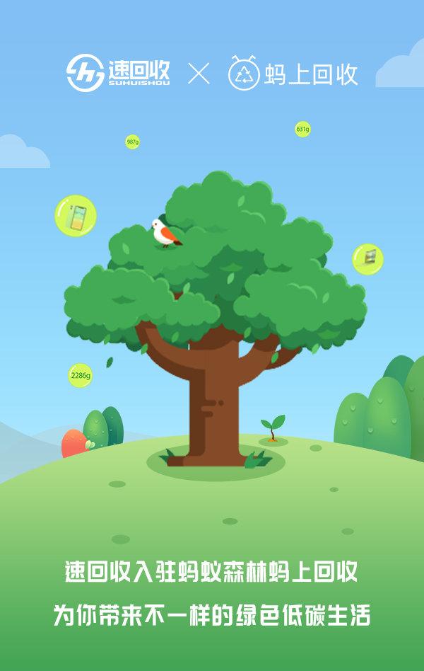用速回收支付宝小程序,手机回收成功领取绿色能量